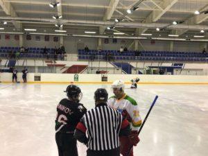 22 и 23 февраля в ЛДС «Арена Легенд» (Озеры) и ФОК им. Каменского (Воскресенск) прошли игры 1/4 плей-офф Чемпионата Любительской Коломенской хоккейной лиги сезона 2019/2020.