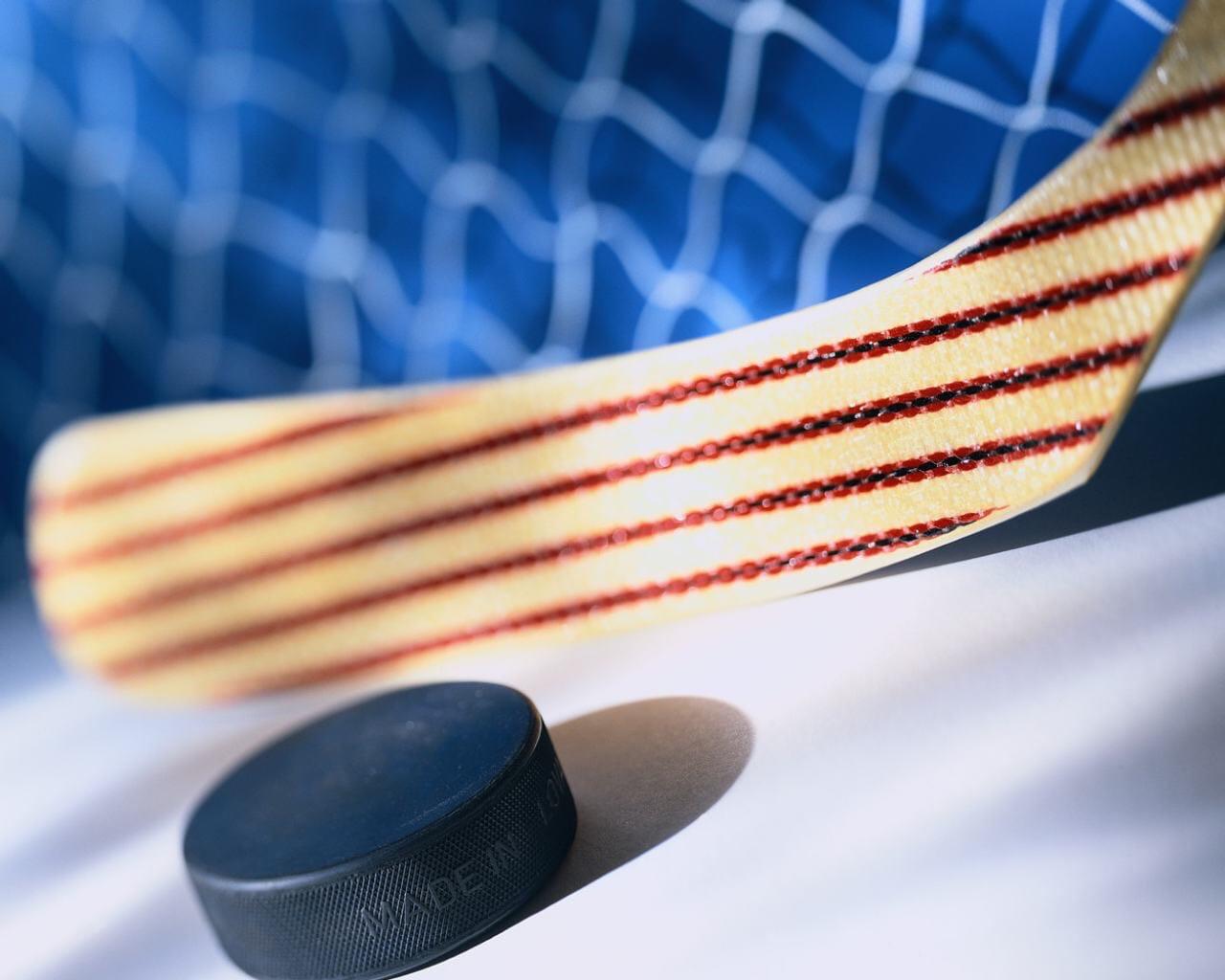 29 февраля в Зарайске состоялся матч плей-офф Открытого Первенства Юго-Востока МО по хоккею среди команд ветеранов категории 50+ (любитель) сезон 2019-20 года.