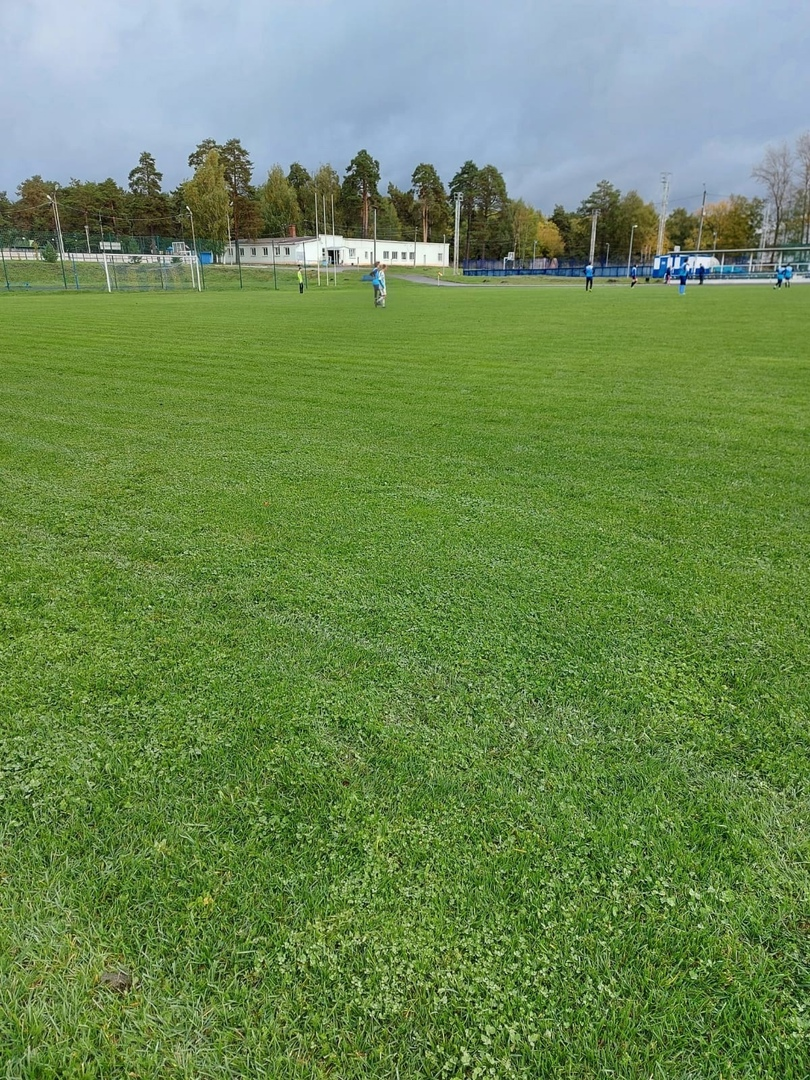 17 октября в г. Зарайск состоялась игра Первенства МО по футболу среди юношеских команд.